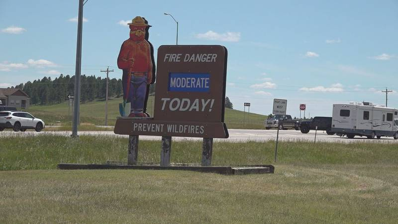 The U.S. Forest Service and South Dakota Wildland fire are partnering to bring in two single...