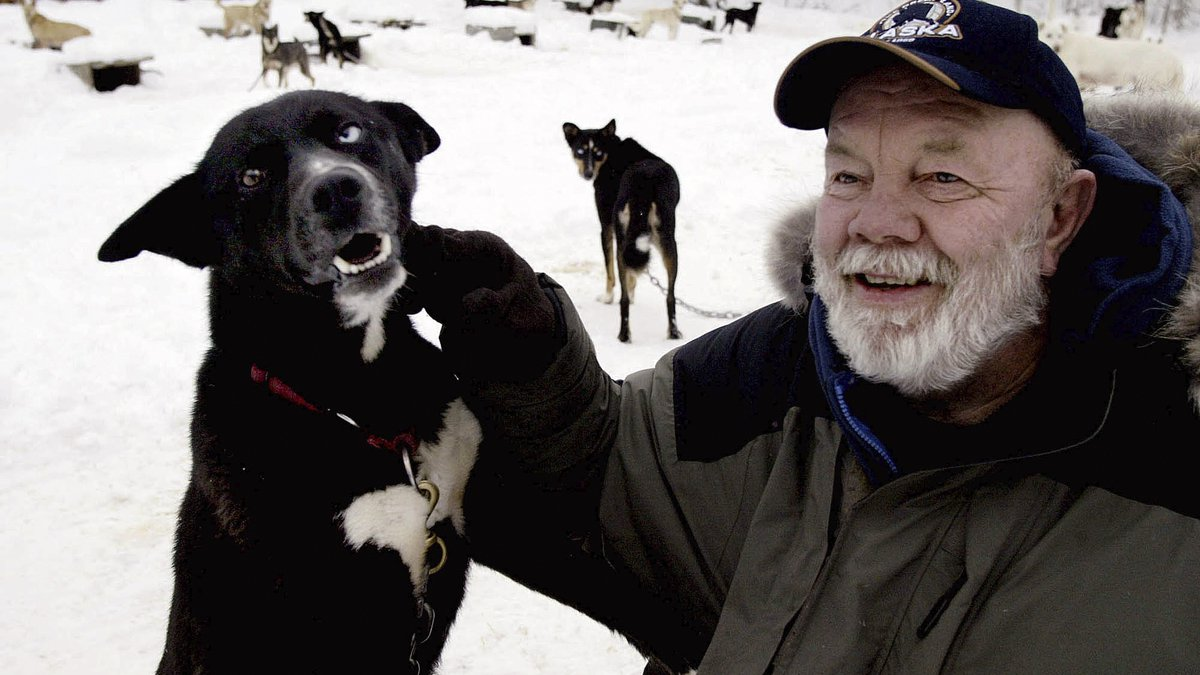 Author Gary Paulsen sits with his favorite Alaskan husky, Flax, at his Willow, Alaska, home on...