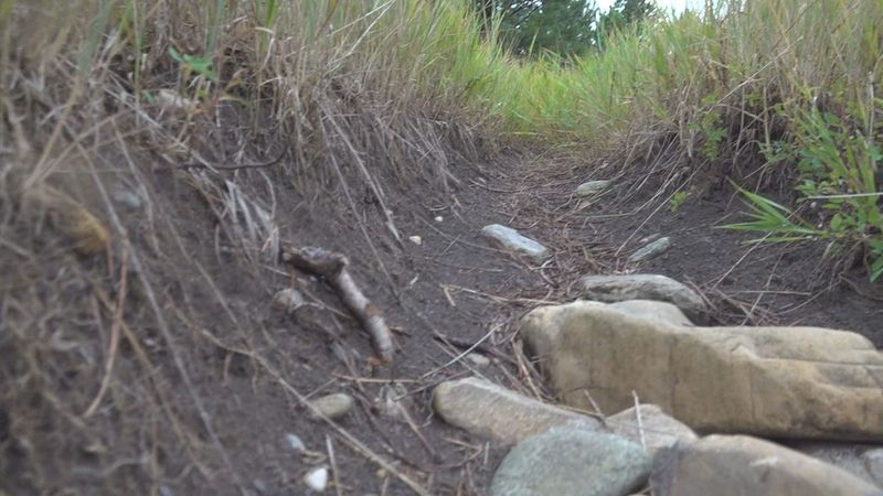 School of Mines and Technology will receive grant money to help create and maintain mountain...