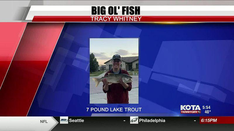 11-30 fish