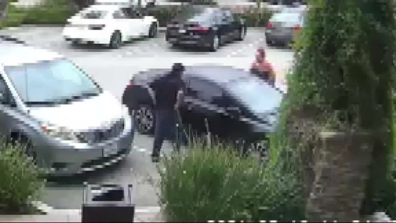The would-be thief climbed out the passenger's side door then fled after the mother continued...