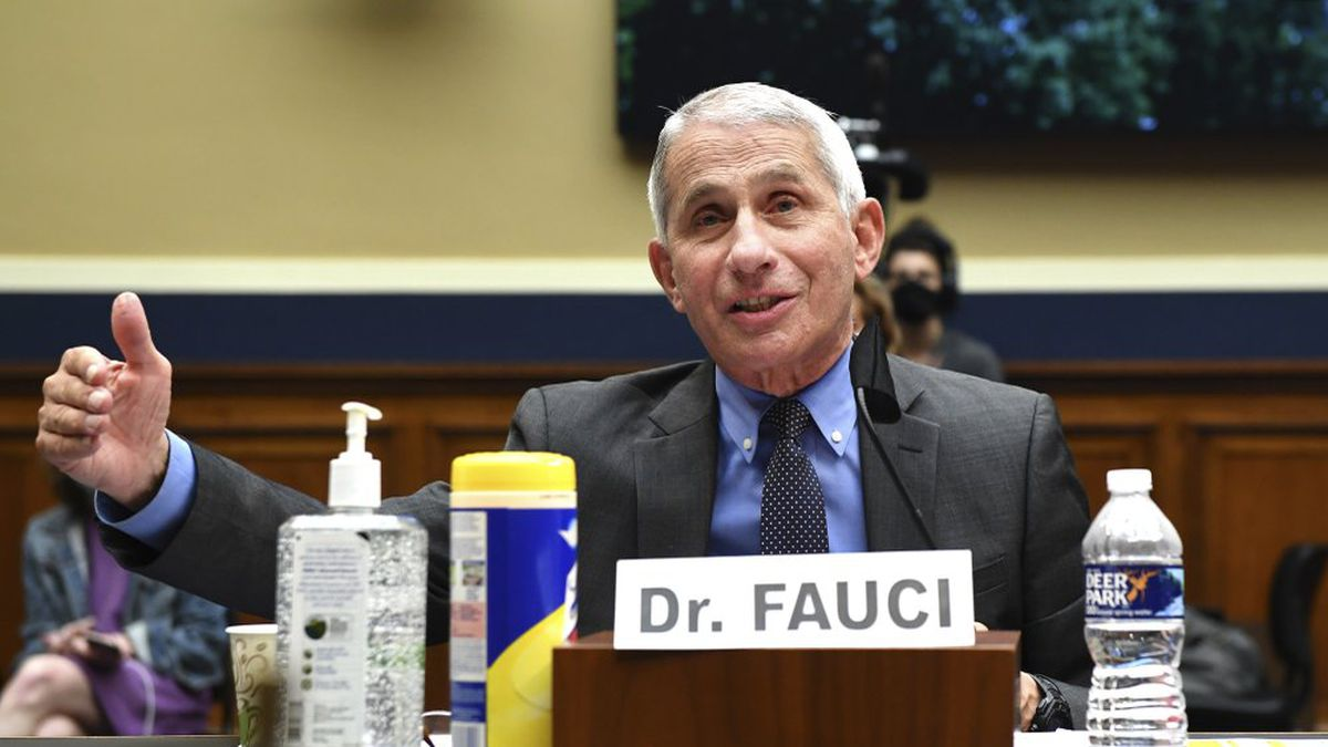 Director of the National Institute of Allergy and Infectious Diseases Dr. Anthony Fauci testifies before a House Committee on Energy and Commerce on the Trump administration's response to the COVID-19 pandemic on Capitol Hill in Washington on Tuesday, June 23, 2020. (AP)