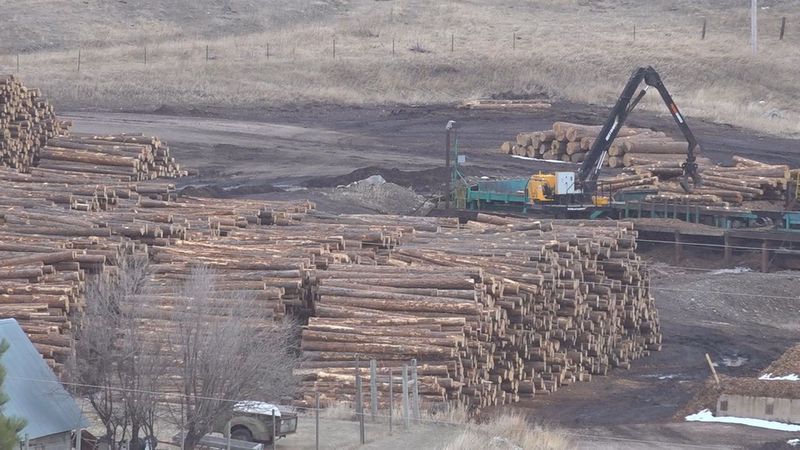 With the decision to shut down the Hill City sawmill on Monday, Neiman Enterprises cited the...