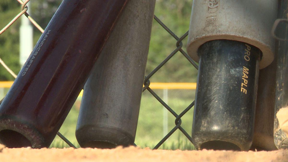 Baseball bats at Casper Park