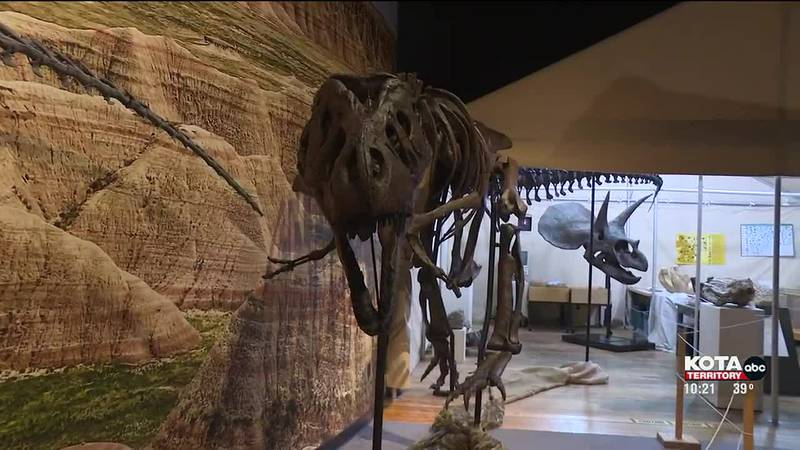Tinker the T-Rex on full display at The Journey Museum