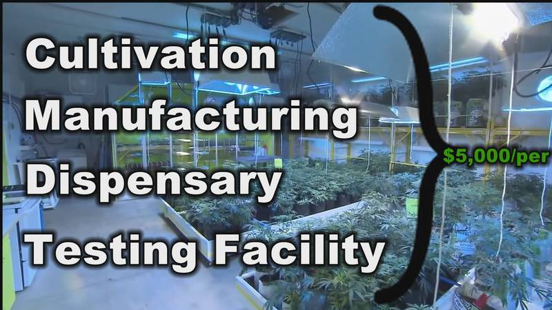 Cultivation, manufacturing, dispensing and testing licenses are soon to be available.