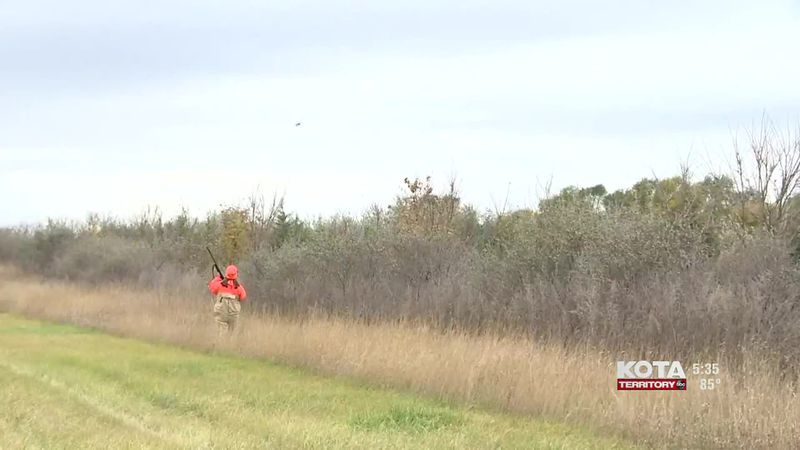Changes about pheasant hunting are being discussed.