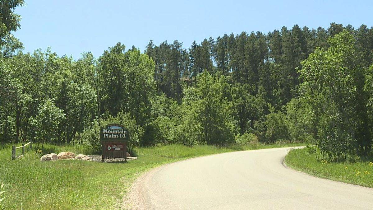 Uncommon wildlife is popping up all over the Black Hills as a bear is spotted in this Spearfish neighborhood. (KOTA TV)