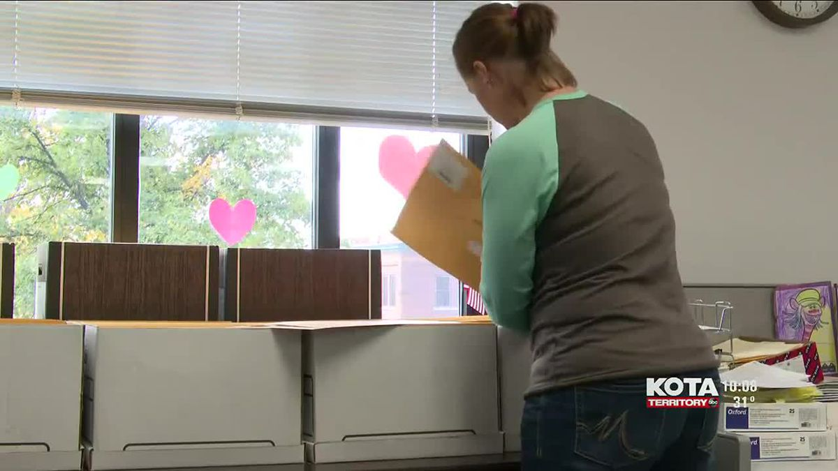 South Dakota representatives weigh in on election security.