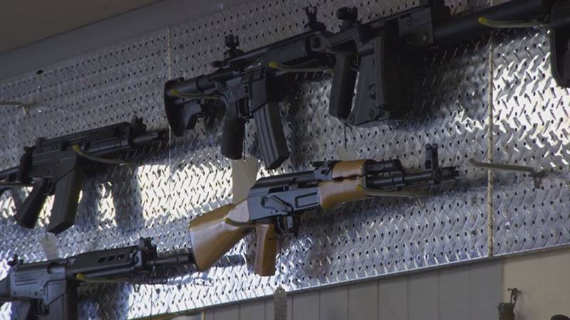 With the rise in deadly mass shootings across the country in recent years, the debate on who...
